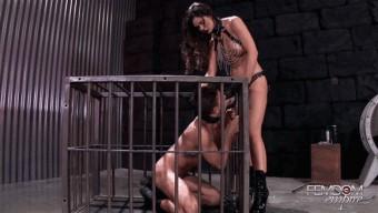 Kendall Karson – Caged Fuck Pet