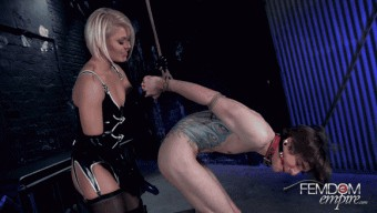 Ash Hollywood – Ravaged by the Strap-on