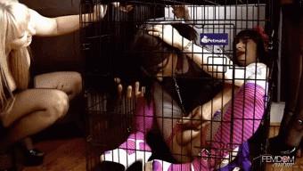Ashley Edmonds – Lexi Sindel – Caged Sissy Sluts