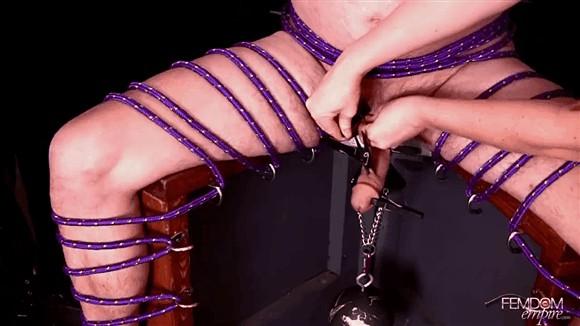 Ashley Edmonds – Lexi Sindel – Cock Swat_cover