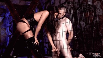 Jade Indica – Caged, Teased, and Milked