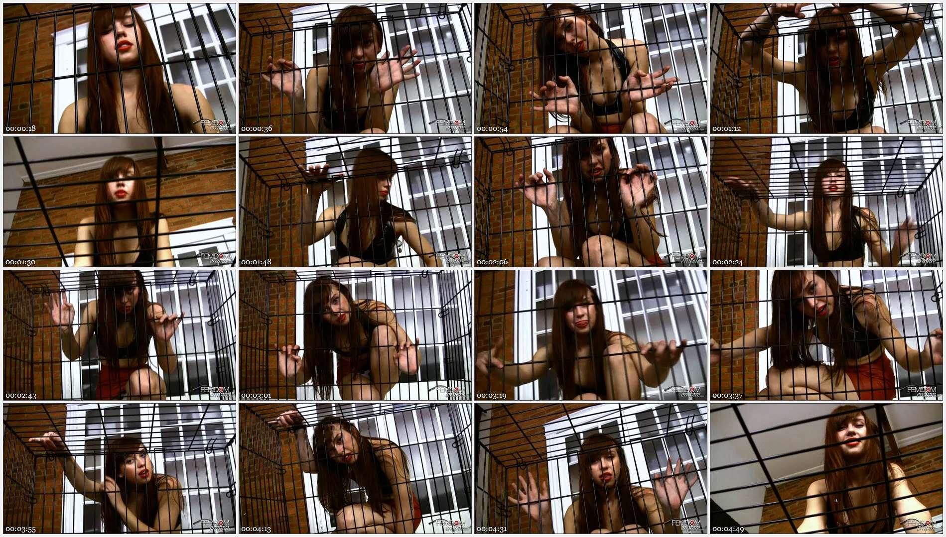 Lara Luxe – My caged pet