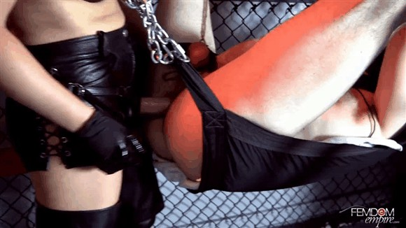 Lexi Sindel – Cage Fucking_cover