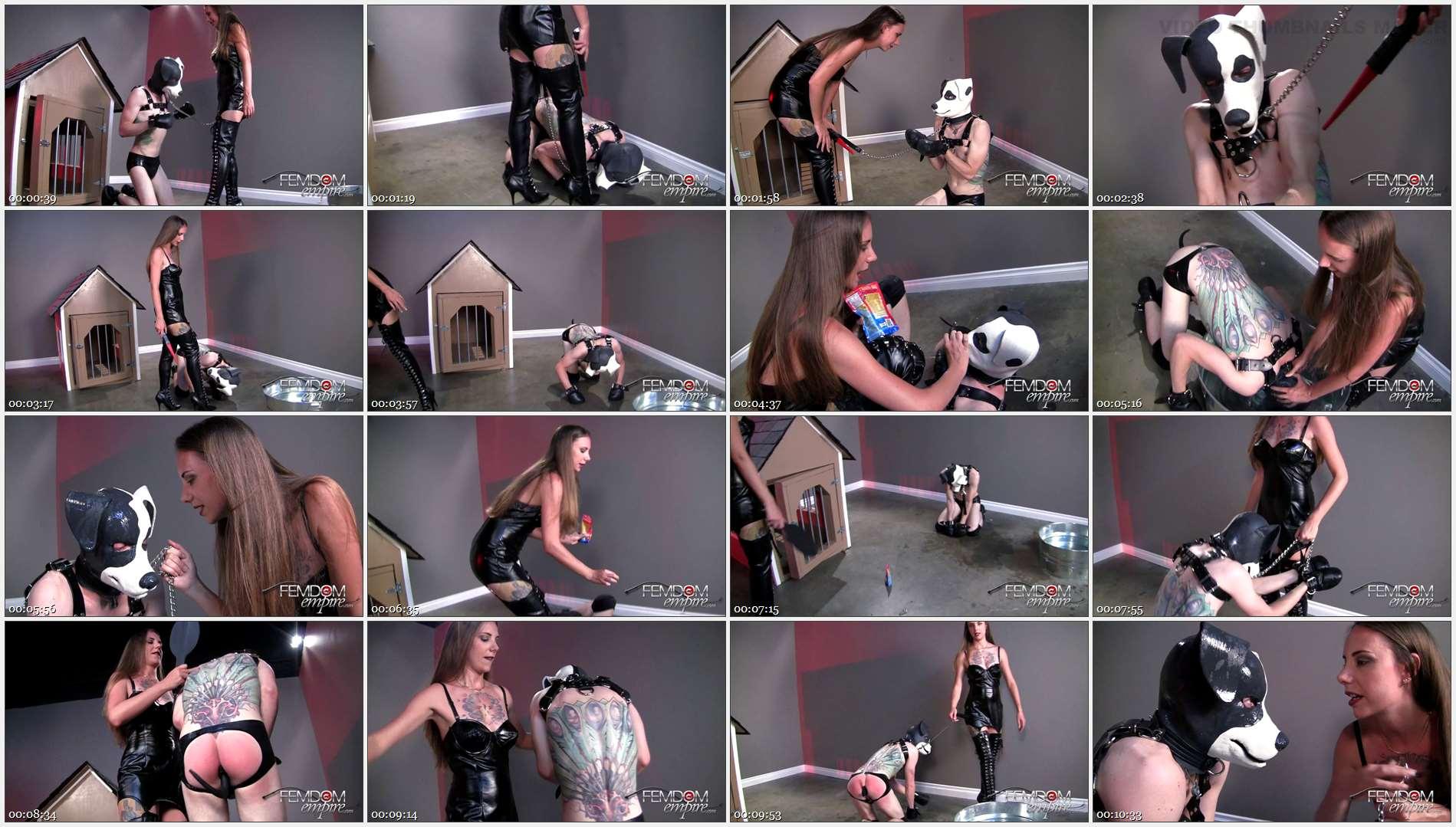 Mona Rogers – Ms Mona\'s pet training