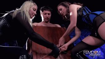 Lexi Sindel – Mistress T – Gelded Bitch