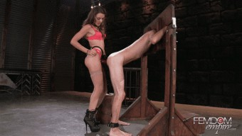 Ally Tate – Strap-on Size Queen