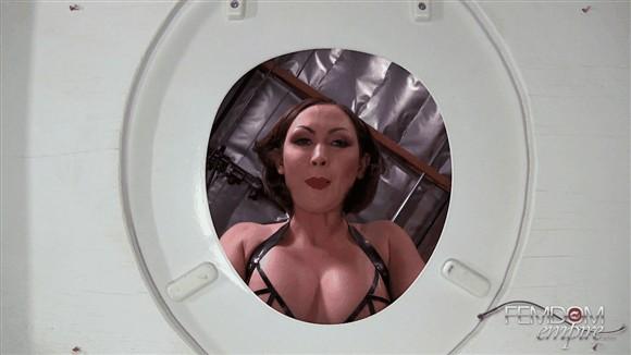 Yasmin Scott – Human Toilet Experience_cover