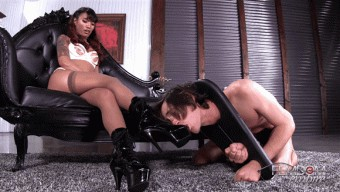 Asia Perez – Foot Lickers Predicament