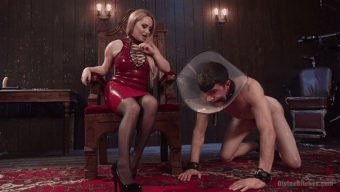 Aiden Starr – Artemis Faux – Aiden Starr Corrects A Very Bad Dog 