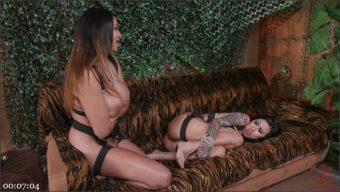 Lily Lane – Missy Martinez – Missy Martinez, Anal Rebel ASSault