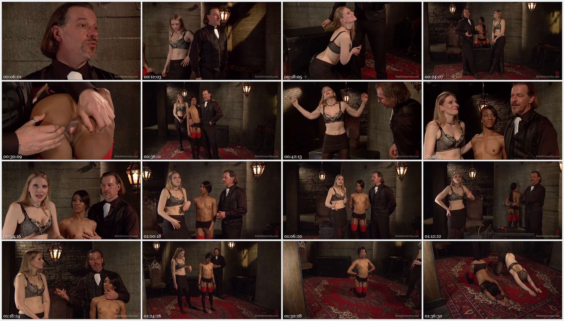 Maestro Stefanos – Shay Tiziano – Nikki Darling – Protocol and Position Training