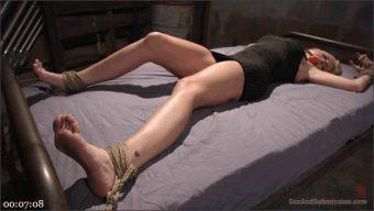 Alena Croft – Bill Bailey – The Captive Slut Under the Stairs