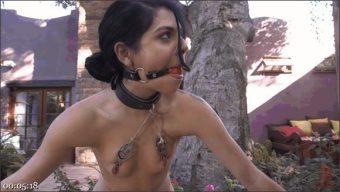 Ramon Nomar – Gina Valentina – Cunt Hunt
