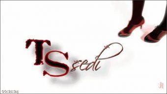 Salina Samone – Lance Hart – A Magical TS Valentine