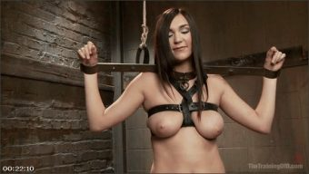 Holly Michaels – Owen Gray – The Training of an Undisciplined Little Fuck Toy, Day Two