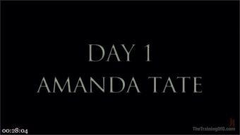 Amanda Tate – Owen Gray – The Training of Amanda Tate, Day One