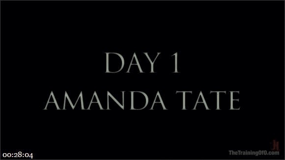 Amanda Tate – Owen Gray – The Training of Amanda Tate, Day One_cover