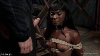 Ana Foxxx – Gage Sin – Ana's Orgasm Denial and Control, Day Three