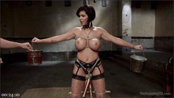 Owen Gray – Shay Fox – Big Tit MILF Training