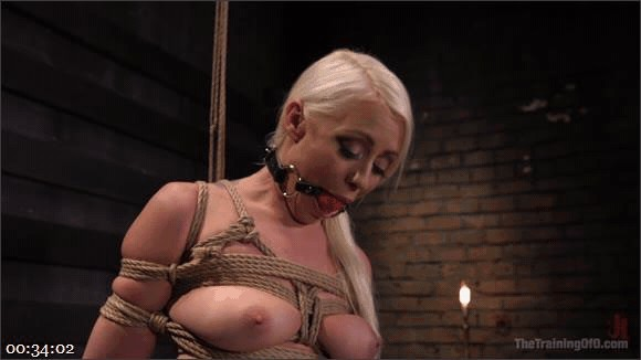 Lorelei Lee – Owen Gray – The Anal Submission of Lorelei Lee_cover