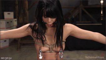 Tommy Pistol – Gina Valentina – Gina Valentina Earns Her Collar