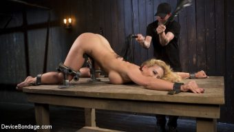 Cherie DeVille – Fight or Flight = The Bitch That Broke Everything