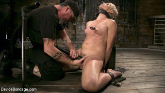 Helena Locke – Captured Cougar