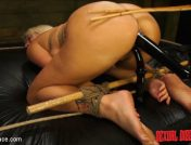 Layla Price – Layla Price #1 Sexual Disgrace West Coast Kink Invades Miami