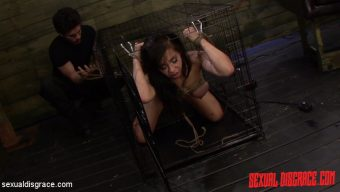 Kimmy Lee – Kimmy Lee has been Kept in a Cage for Deepthroat BJs & Anal Sex