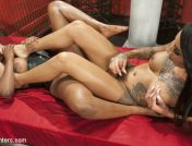 Honey FoXXX – Lisa Tiffian submits to TS Honey Foxxx and her big Ebony Cock