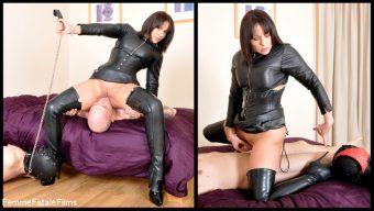 Mistress Carly – Carly's Cuckold