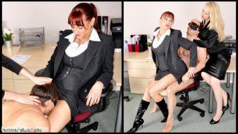 Miss Miranda – Office Sex Toy
