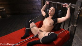 Whitney Wright – Fresh Meat: Whitney Wright Is Bound And Fucked