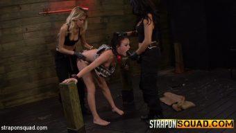 Brooklyn Daniels – Brooklyn Daniels is Up for Slave Training with Mila Blaze & Lexy Villa