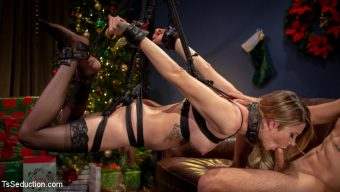 Casey Kisses – Best Christmas Ever: Gorgeous Casey Kisses Submits To Dante Colle