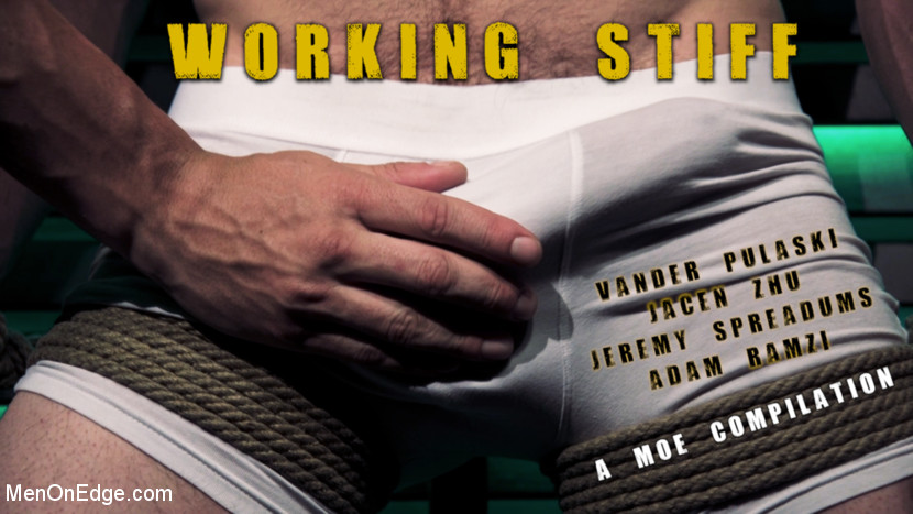 Vander Pulaski – Working Stiff! A kinky MOE Compilation_cover