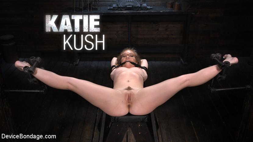 Katie Kush – Katie Kush: The Brat is Back_cover