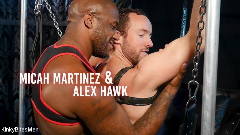 Alex Hawk, – Daddy's Home: Alex Hawk & Micah Martinez Fuck RAW_cover